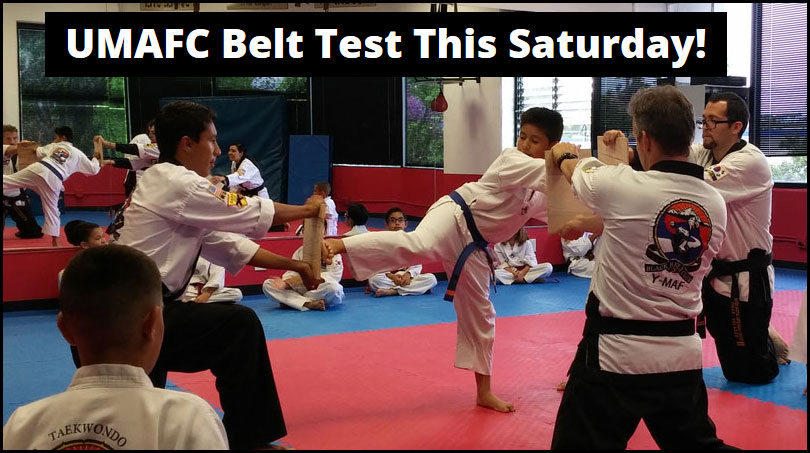 Summer Belt Test